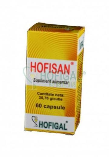Hofisan (caps.x0,4g)
